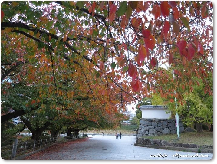福岡城紅葉 (353)