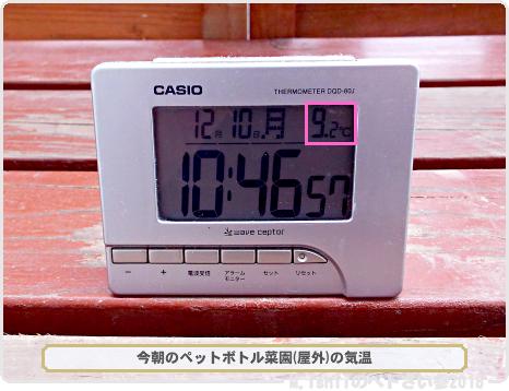 ペトさい的防寒対策01