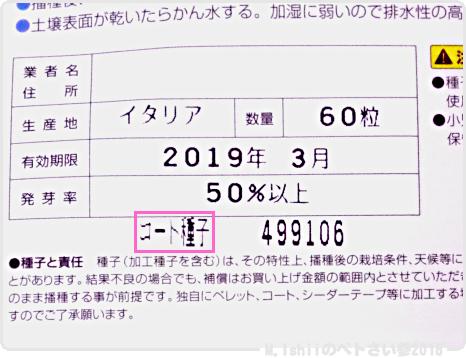 ペトさい(アイスプラント)02