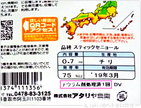 ペトさい(茎ブロッコリー)02