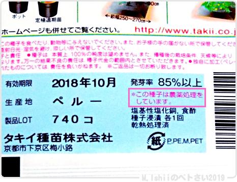 ペトさい(ミニメロン・改)04