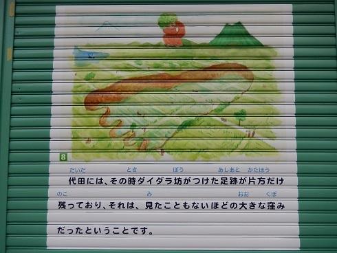DSCN2313.jpg