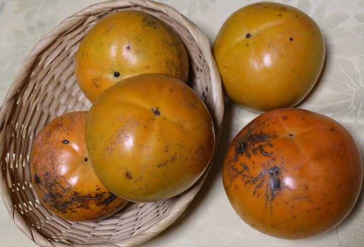 たいしゅう柿 太秋 30 10 21