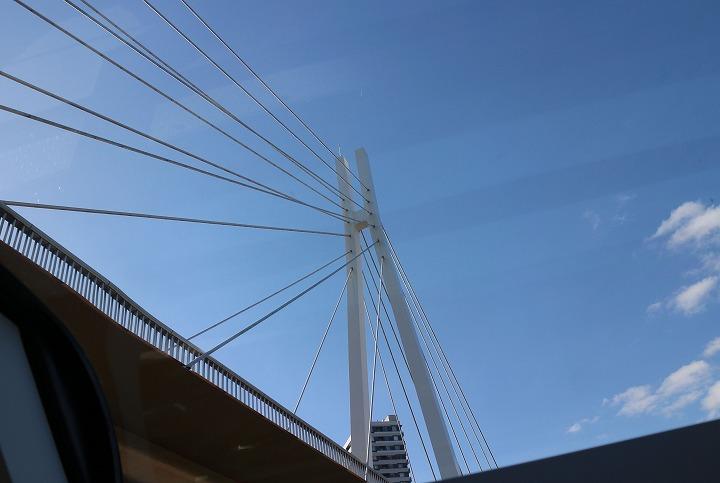 アクアライナーから見た吊り橋 30 10 25