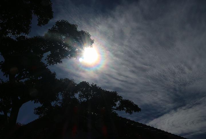 逆光で 太陽ni七色の輪 30 11 16