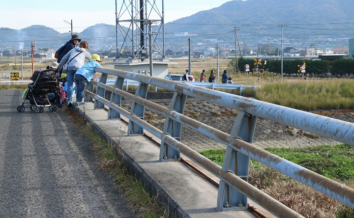三野津橋から なんか居るよ 30 11 16