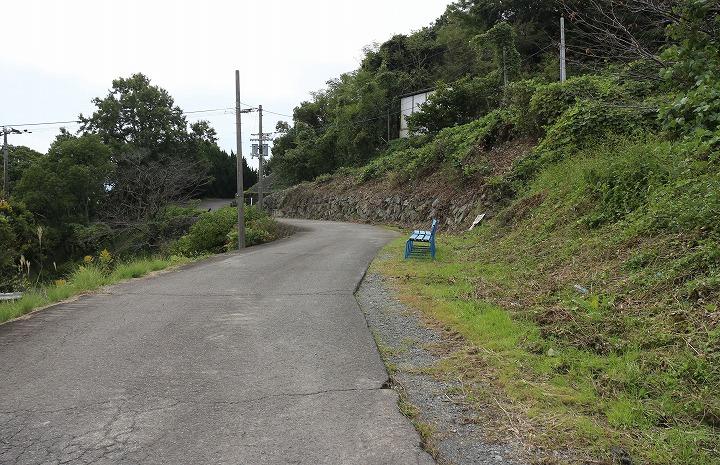 爺神山の遍路道 南側 30 11 20
