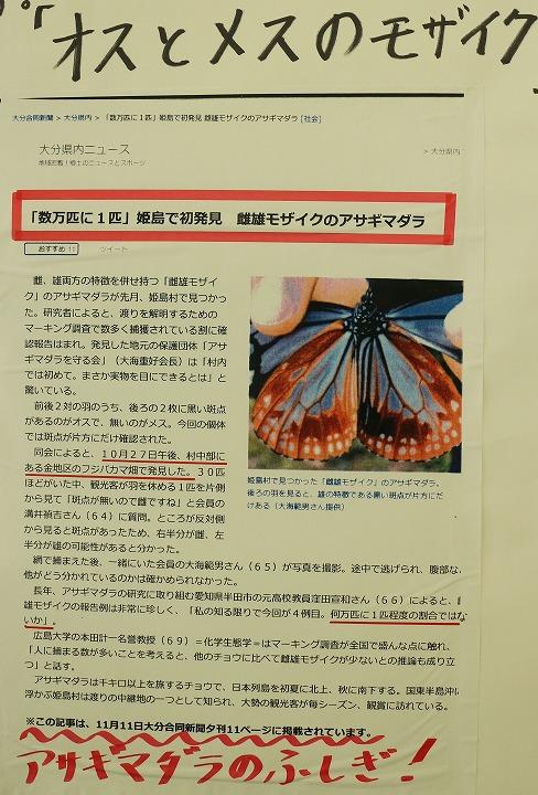 浅葱斑モザイク 新聞記事 31 1 20