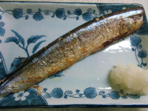 213  秋刀魚完成(1)