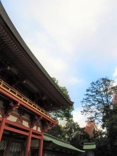 201   氷川神社空(1)