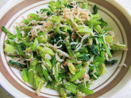 231  小松菜(1)