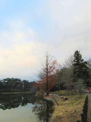201  大宮公園空(1)