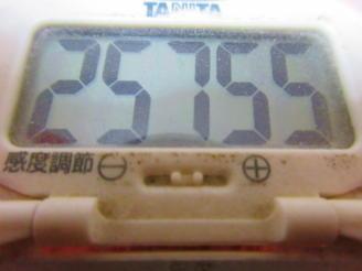 210  歩数計(1)