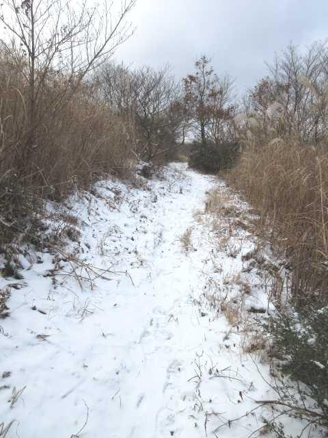 IMG0018JPG今年お初の雪道