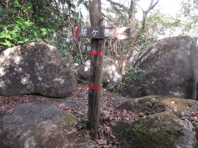 IMG0047JPG山頂