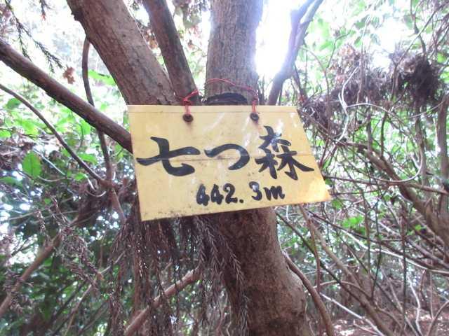 IMG0013JPG七ツ森