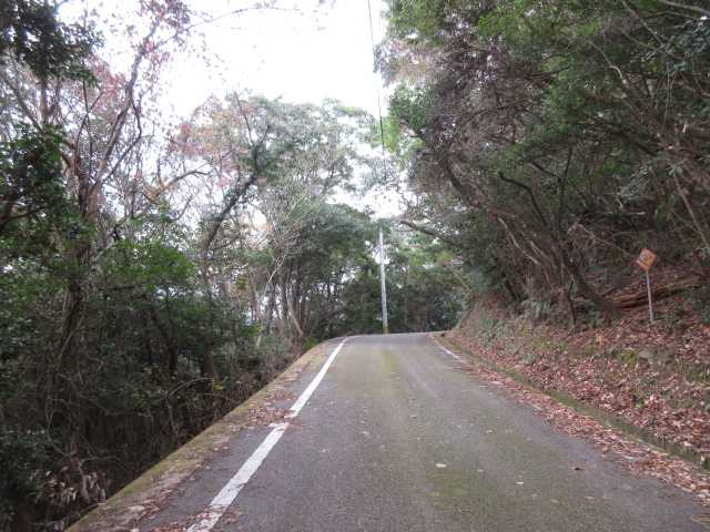IMG0025JPG林道歩き