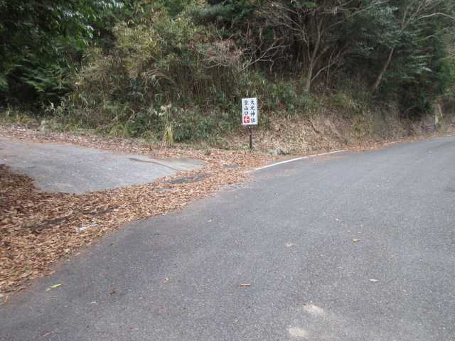 IMG0031JPG林道から左折