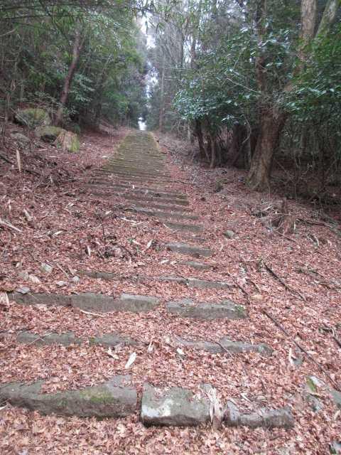 IMG0061JPG長い石段