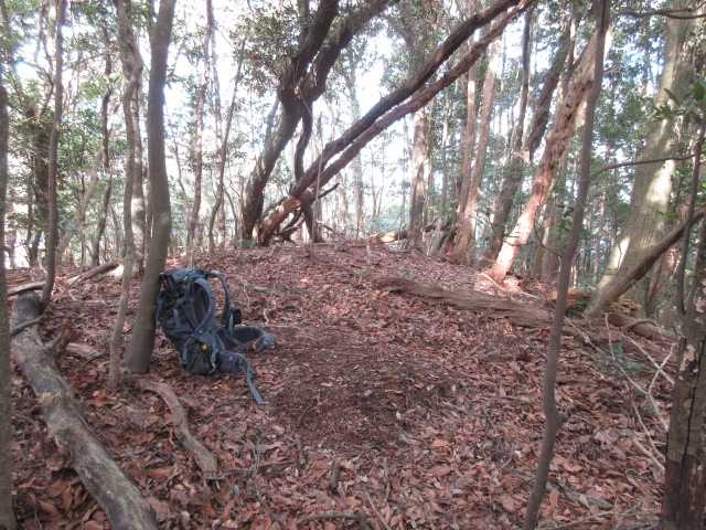 IMG0035JPG3の山