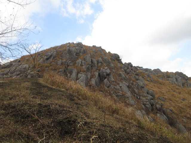 IMG0046JPG貝殻山
