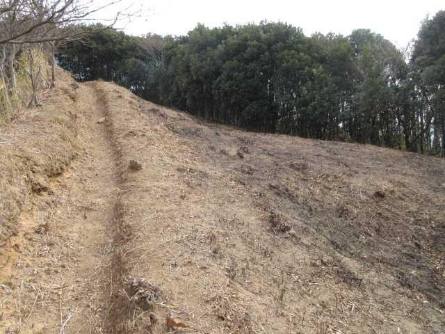 IMG0085JPG野焼の済んだ登山道