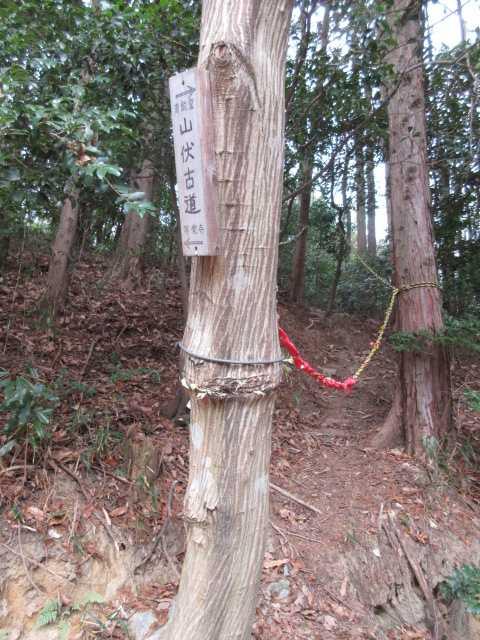 IMG0087JPG山伏古道