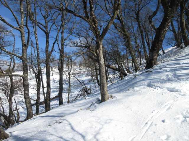 IMG0060JPG雪原1
