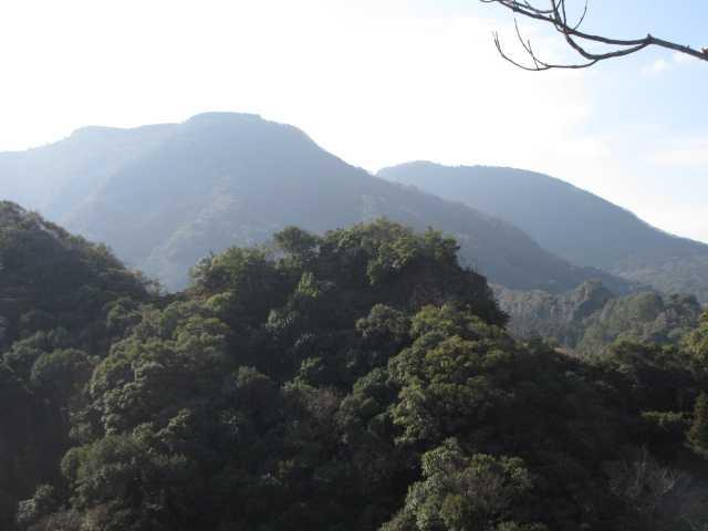 IMG0017JPGハジカミ、尻付山