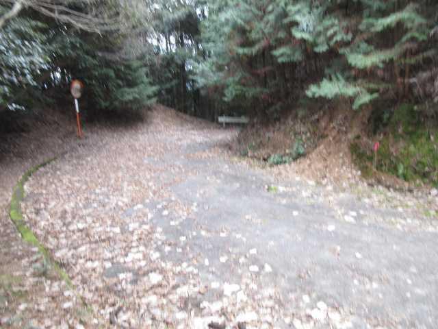 IMG0054JPG林道に下りてきた
