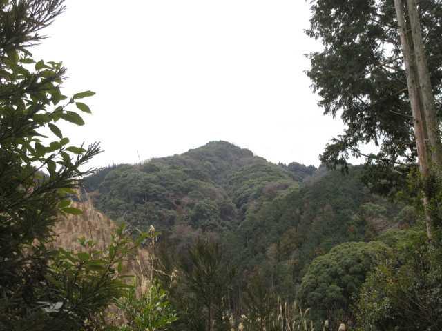 IMG0099JPG鷲越より弓張岳