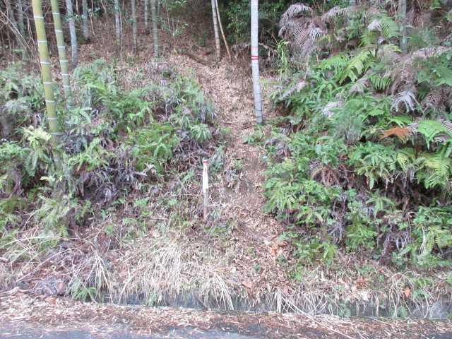 IMG0005JPG林道ザル尾線取り付