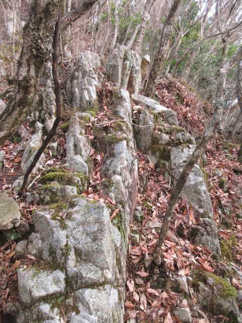 IMG0022JPG岩稜