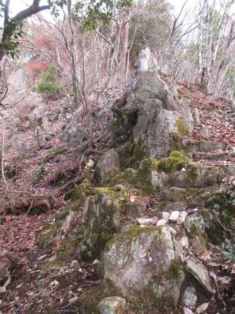 IMG0023JPG岩稜2