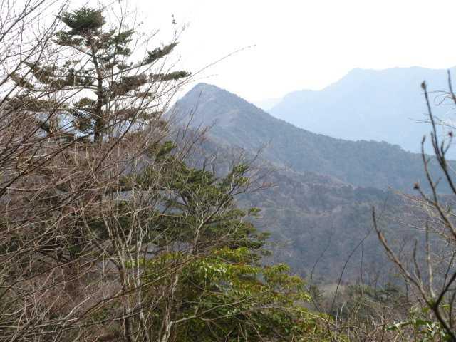 IMG0070JPG樹間に刈又山