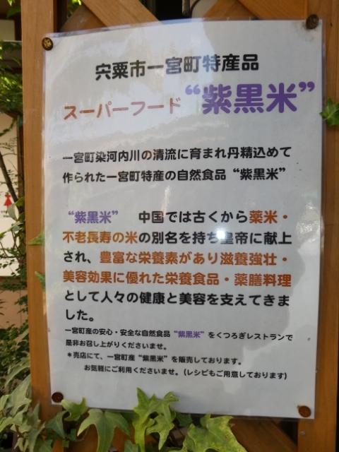 道の駅いちのみや (7)_resized