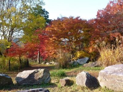 嵐山散歩1