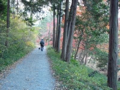 嵐山散歩6