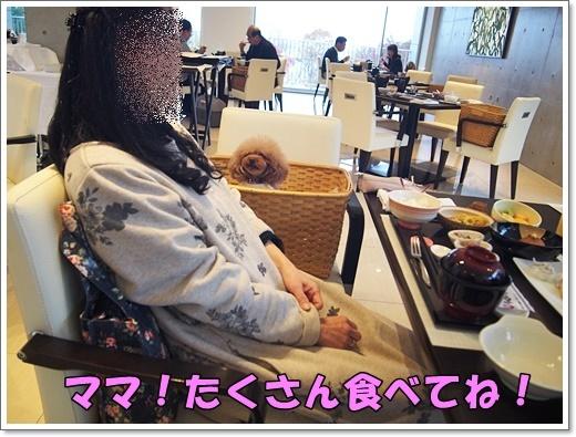 20181105_396.jpg