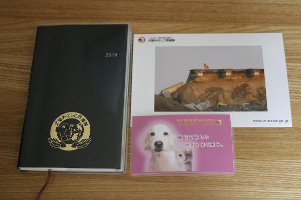 中谷 百合 犬 猫 みなし ご 救援 隊 ブログ