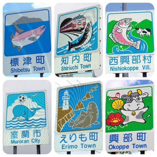 その他の水生動物2-1