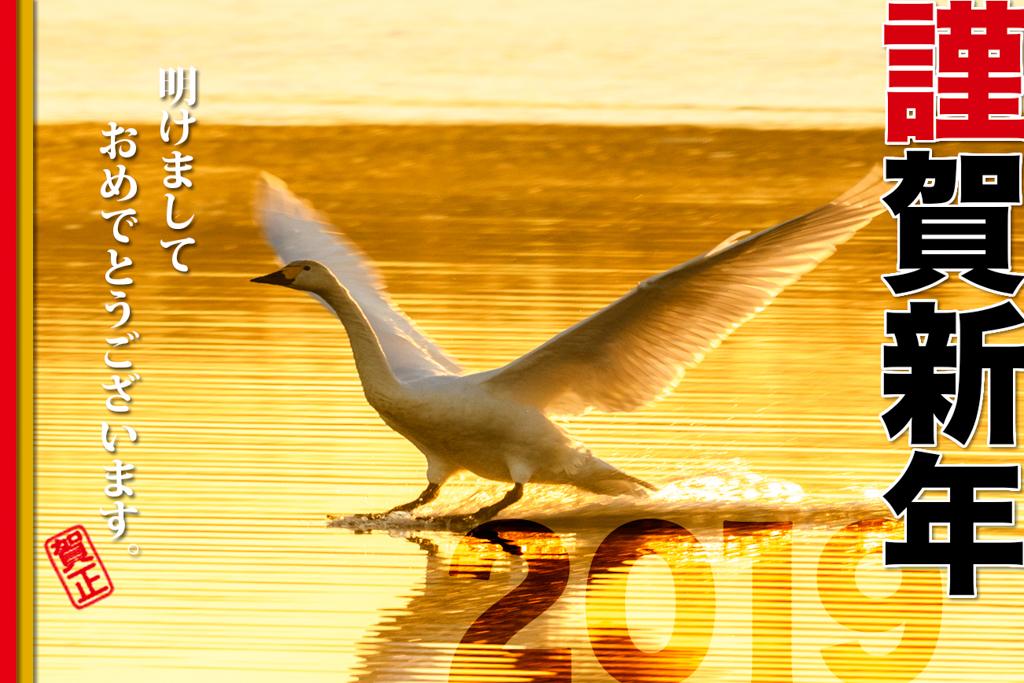 20141214-2019.jpg