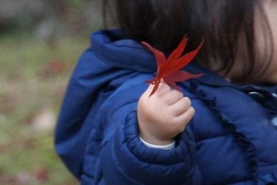子供の手IMG_5272