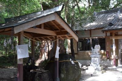 神社参道DSC_0093