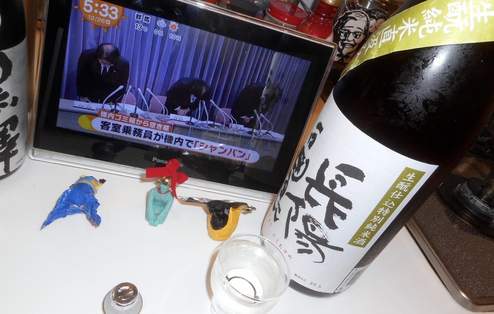 musume_kimoto29by2_3.jpg
