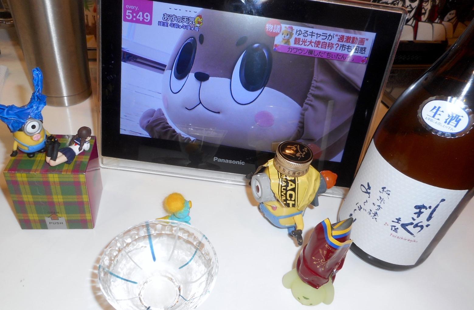 tosashiragiku_hattan_arabashiri30by3.jpg