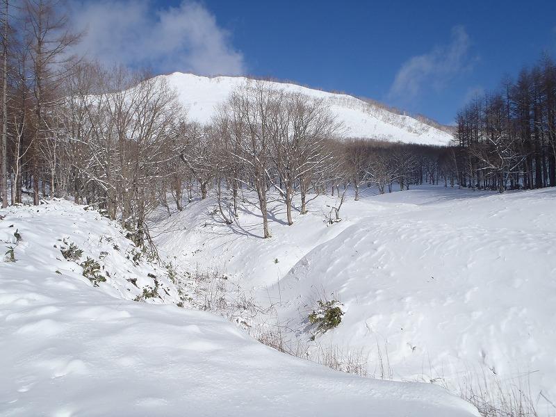 温泉富士3