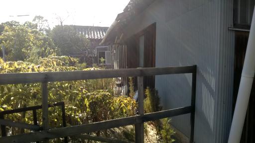 ブログ小豆島DSC_0084