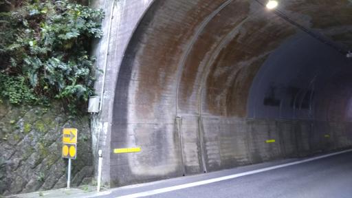 ブログ小豆島DSC_0106
