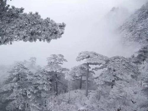 2018年12月黄山2